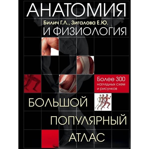 Анатомия и физиология. Большой популярный атлас. Билич Г.Л., Зигалова Е.Ю.