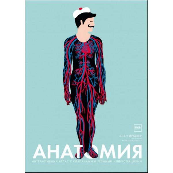 Анатомия. Элен Дрювер