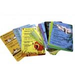 Обучающая игра Асборн-карточки Робинс, Вопросы и ответы о животных