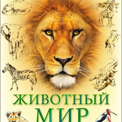 Лучшая детская энциклопедия. Животный мир от А до Я
